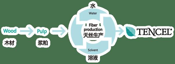 天丝纤维生产过程