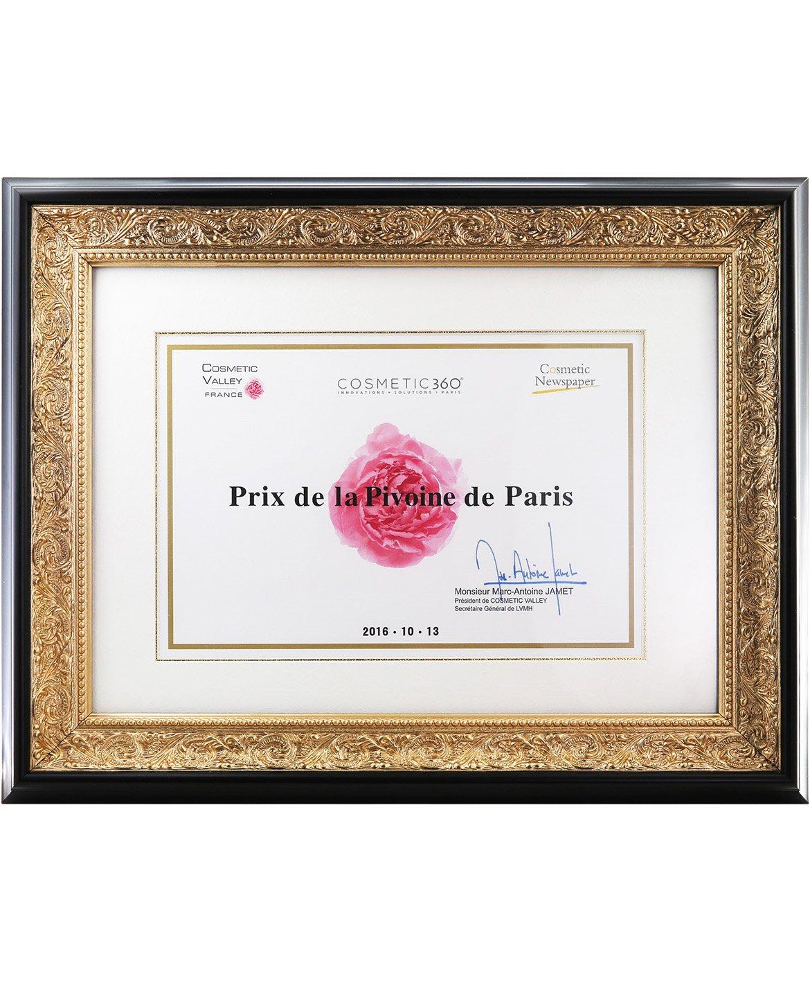 巴黎牡丹奖